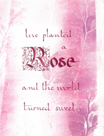 Love planted a rose - 2015